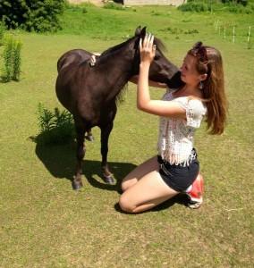 my-horse2